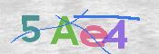 CAPTCHA 验证图片